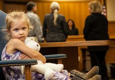 Child custody and other related laws